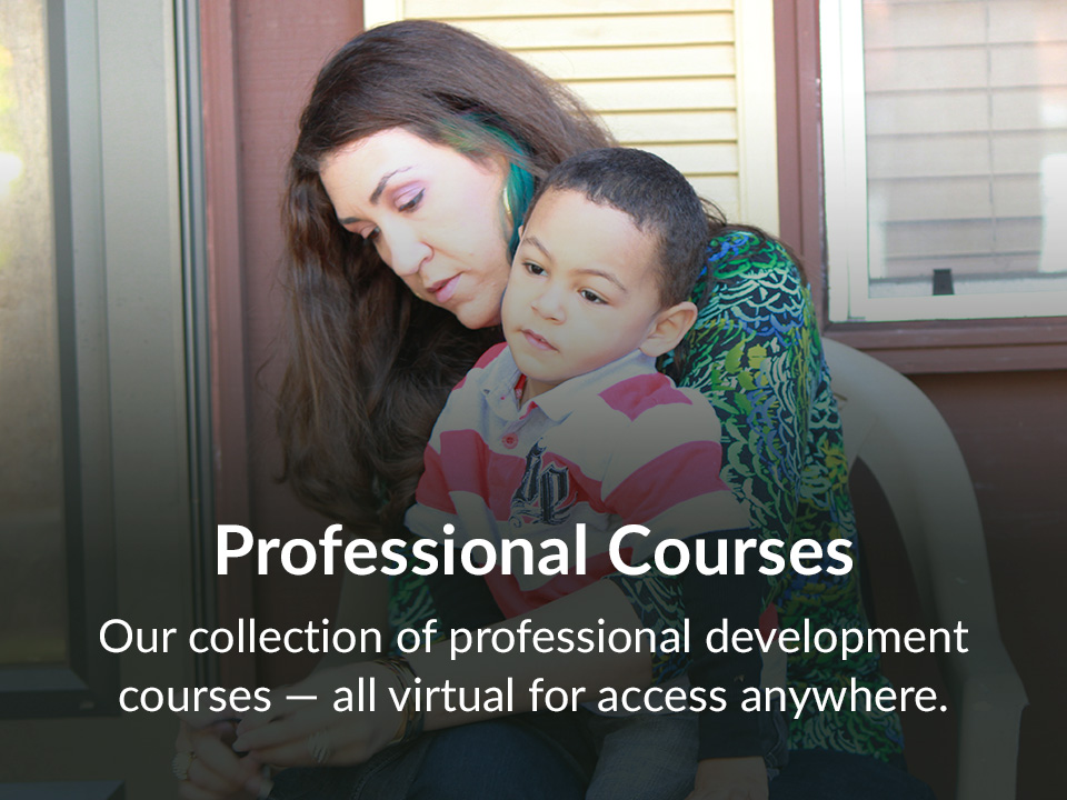 Our collection of professional development courses — all virtual for access anywhere.